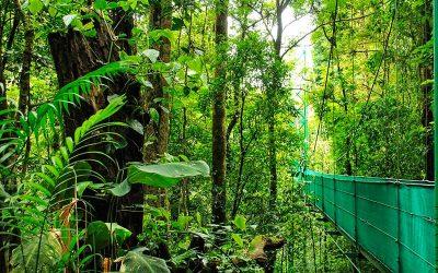 Curiosidades de Costa Rica